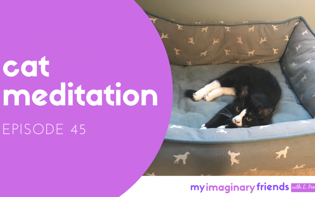 Cat Meditation – My Imaginary Friends: Episode 45